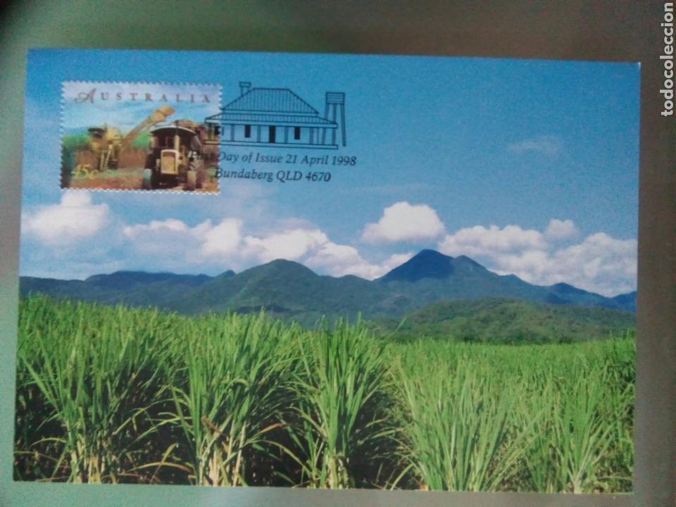 Sellos: Australia 1998 5 tarjetas máximas agricultura ganadería - Foto 5 - 73788422