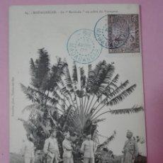 Sellos: POSTAL MADAGASCAR 1907 LE RAVINALA A O ARBOL DEL VIAJERO (TARJETA MÁXIMA). Lote 105091348