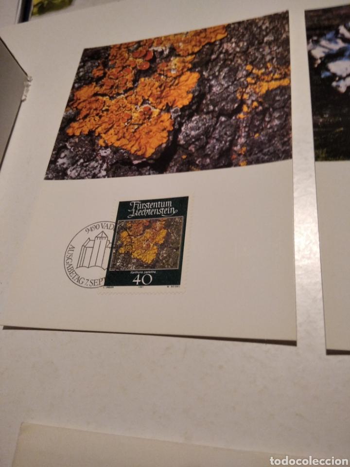 Sellos: TARJETA MAXIMA LIECHTENSTEIN Sobre n25 con 4 tarjetas - Foto 2 - 220993996