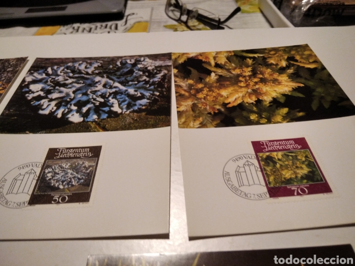 Sellos: TARJETA MAXIMA LIECHTENSTEIN Sobre n25 con 4 tarjetas - Foto 3 - 220993996
