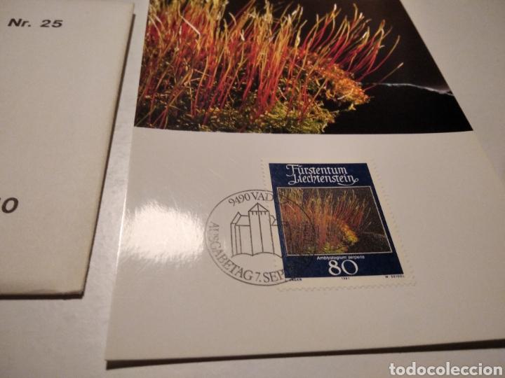 Sellos: TARJETA MAXIMA LIECHTENSTEIN Sobre n25 con 4 tarjetas - Foto 4 - 220993996