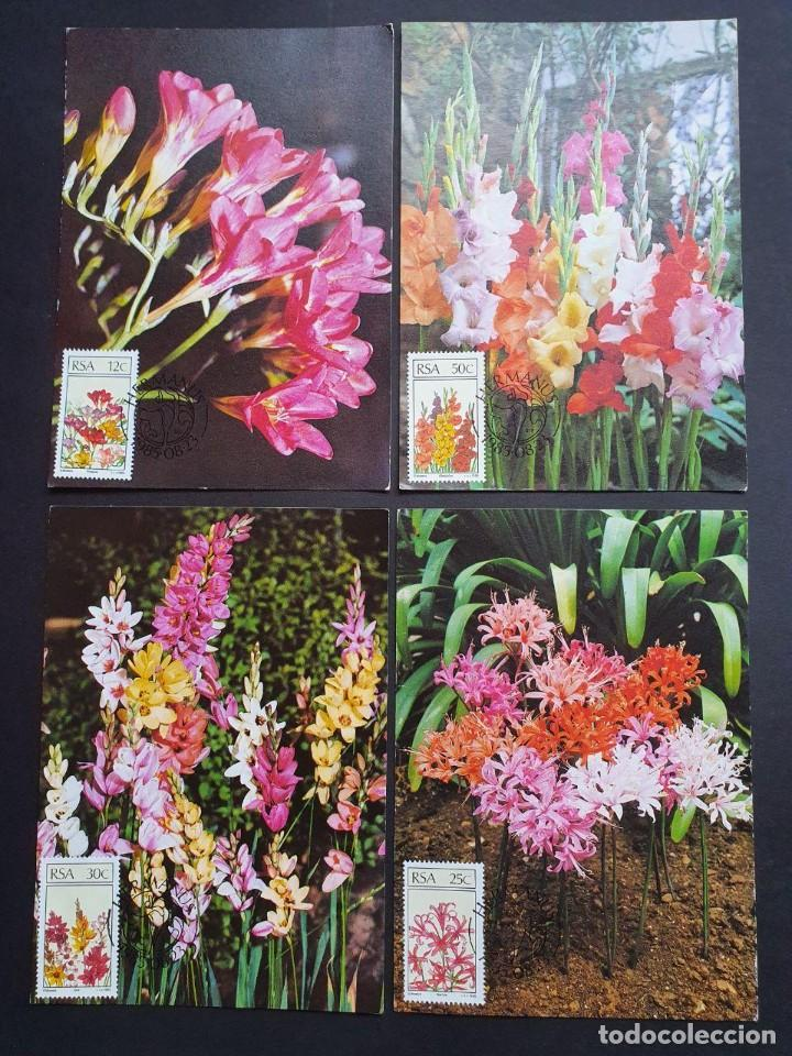 4 TARJETAS MÁXIMA SUDAFRICA 1985: FLORES - FLOWERS - BLUMEN - FLEURS (Sellos - Extranjero - Tarjetas Máximas)