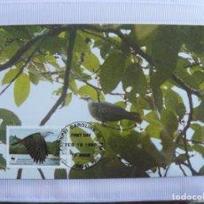 Sellos: TARJETA DE MICRONESIA PAJAROS 1990. Lote 226669245