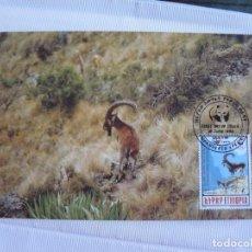 Sellos: TARJETA ETIOPIA CABRA MONTES DE ETIOPIA 1990. Lote 226669555