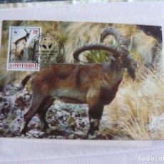 Sellos: TARJETA ETIOPIA CABRA MONTES DE ETIOPIA 1990. Lote 226669670