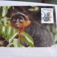 Sellos: TARJETA GUINEA BISSAU MONOS 1990. Lote 226670045