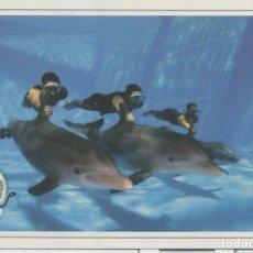 Sellos: CUBA 2017 DOLPHINS AQUARIUM - DOLPHINS. Lote 241501165