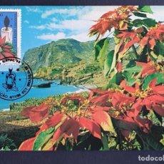 Sellos: TARJETA MÁXIMA BRASIL - NAVIDAD FLORA: FLOR DE PASCUA (EUPHORBIA PULCHERRIMA), BRASILIA, DF 1996. Lote 244733835