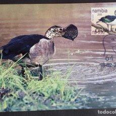 Sellos: TARJETA MÁXIMA NAMIBIA - FAUNA AVES PATOS: GANSO DE ESPOLÓN (SARKIDIORNIS MELANOTOS) ORANJEMUND 2000. Lote 245061495