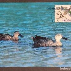 Sellos: TARJETA MÁXIMA NAMIBIA - FAUNA AVES PATOS: CUCHARA DEL CABO (ANAS SMITHII) ORANJEMUND 2000. Lote 245061930