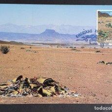 """Timbres: TARJETA MÁXIMA NAMIBIA - FLORA PLANTA PREHISTÓRICA: """"WELWITSCHIA MIRABILIS"""" DESIERTO, KHORIXAS 2000. Lote 245065505"""