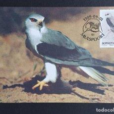 Sellos: TARJETA MÁXIMA BOPHUTHATSWANA - FAUNA AVES: ELANIO COMÚN (ELANUS CAERULEUS), SAULSPOORT 1989. Lote 245410350
