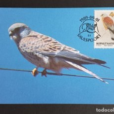 Sellos: TARJETA MÁXIMA BOPHUTHATSWANA - FAUNA AVES: CERNICALO (FALCO NAUMANNI), SAULSPOORT 1989. Lote 245410610