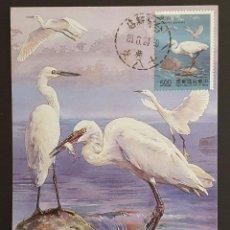 Selos: TARJETA MÁXIMA TAIWAN - FAUNA AVES: GARCETA COMÚN (EGRETTA GARZETTA), 1991. Lote 252069370