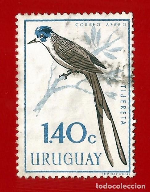 URUGUAY. 1962. PAJAROS. TIJERETA (Sellos - Extranjero - América - Uruguay)