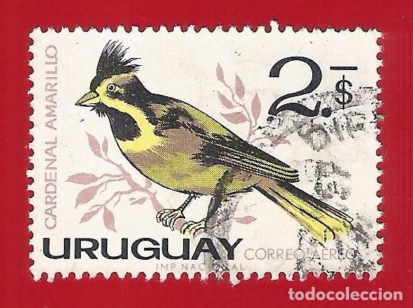 URUGUAY. 1963. PAJAROS. CARDENAL AMARILLO (Sellos - Extranjero - América - Uruguay)