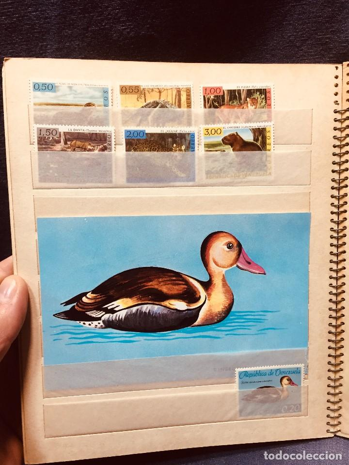 Sellos: colección serie sellos venezuela tarjetas postales aves mediados s xx - Foto 12 - 184549486