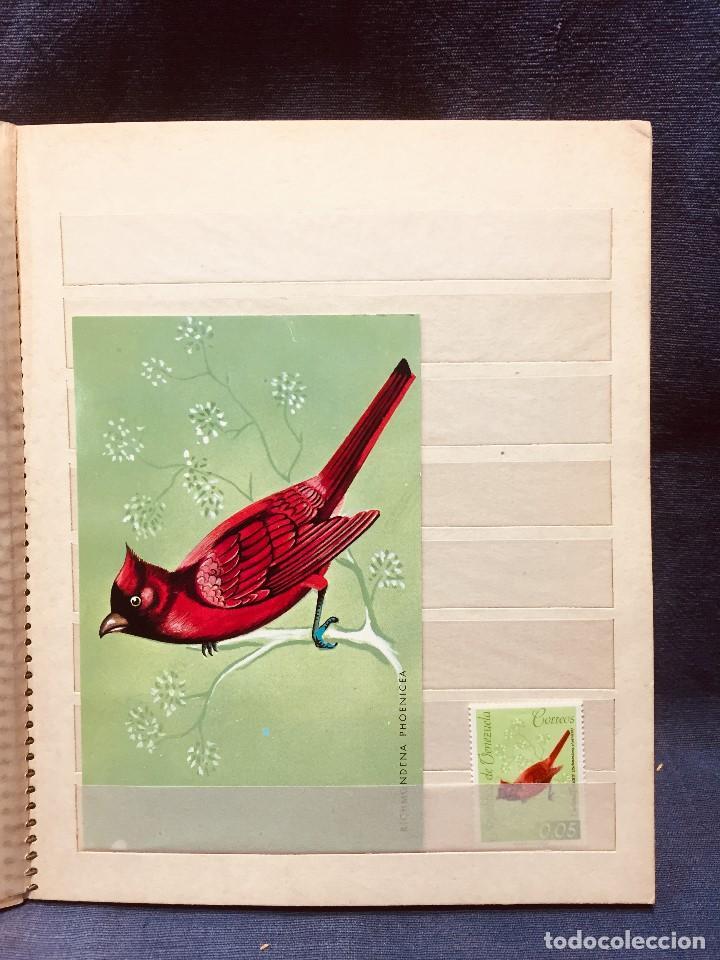 Sellos: colección serie sellos venezuela tarjetas postales aves mediados s xx - Foto 13 - 184549486