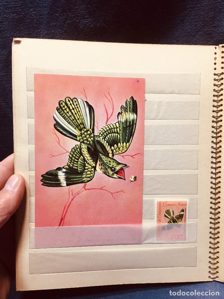 Sellos: colección serie sellos venezuela tarjetas postales aves mediados s xx - Foto 14 - 184549486