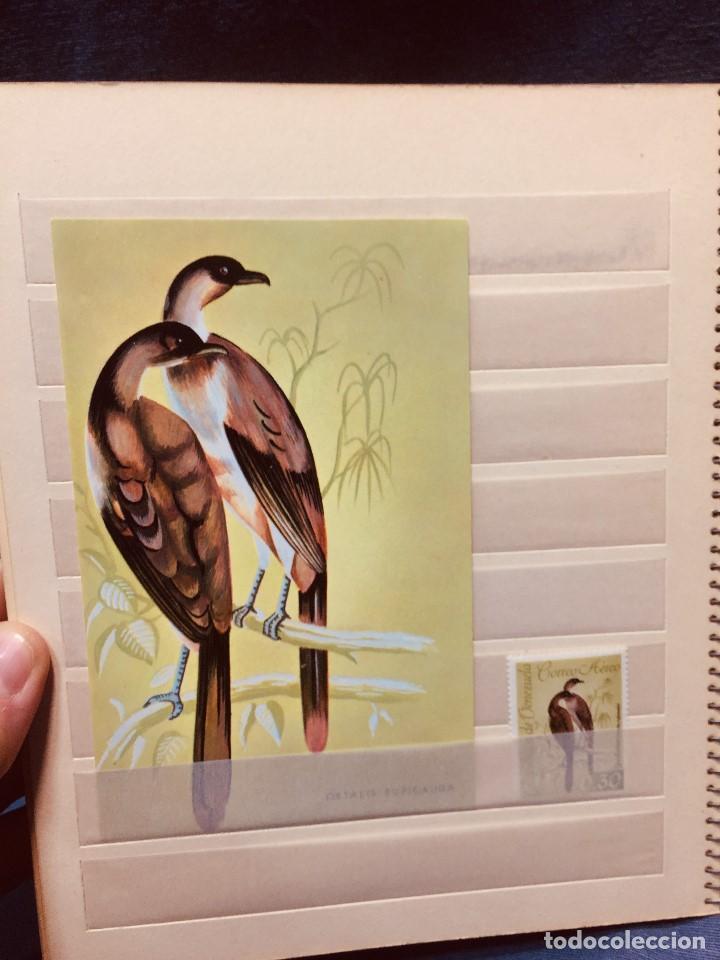 Sellos: colección serie sellos venezuela tarjetas postales aves mediados s xx - Foto 18 - 184549486