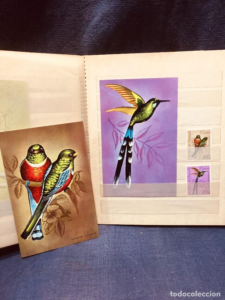 Sellos: colección serie sellos venezuela tarjetas postales aves mediados s xx - Foto 19 - 184549486