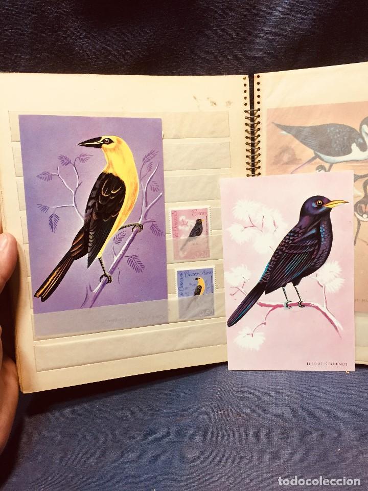 Sellos: colección serie sellos venezuela tarjetas postales aves mediados s xx - Foto 20 - 184549486
