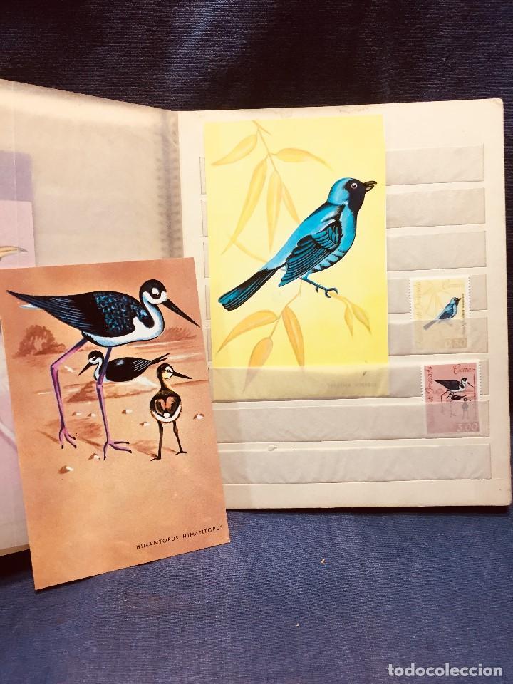 Sellos: colección serie sellos venezuela tarjetas postales aves mediados s xx - Foto 21 - 184549486