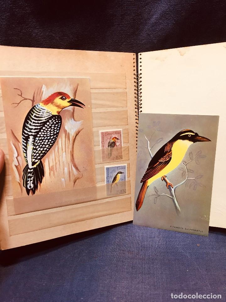 Sellos: colección serie sellos venezuela tarjetas postales aves mediados s xx - Foto 22 - 184549486