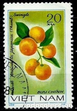 VIETNAM SCOTT: 1142-(1981) (KUMQUAT (FORTUNELLA JAPONICA)) USADO (Sellos - Extranjero - Asia - Vietnam)
