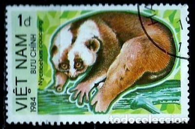 VIETNAM SCOTT: 1367-(1984) (SUNDA SLOW LORIS (NYCTICEBUS COUCANG) USADO (Sellos - Extranjero - Asia - Vietnam)