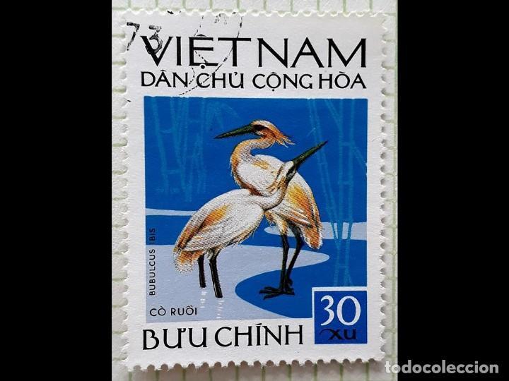 VIET-NAM (NORTE) FAUNA-AVES 1972 (Sellos - Extranjero - Asia - Vietnam)