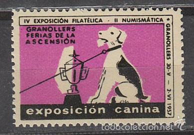 1957, VIÑETA DE GRANOLLERS, EXPOSICION CANINA, NUEVA *** (Sellos - Extranjero - Viñetas)