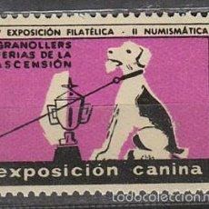 Sellos: 1957, VIÑETA DE GRANOLLERS, EXPOSICION CANINA, NUEVA ***. Lote 57305070