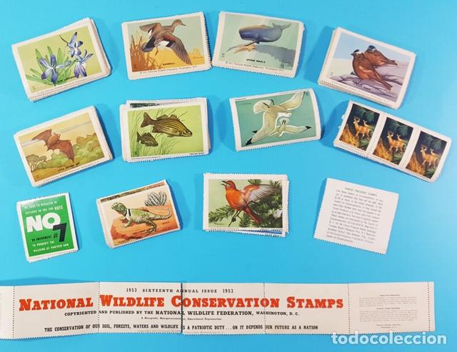 Sellos: LOTE VARIAS VIÑETAS NATIONAL WILDLIFE CONSERVATION STAMPS, VARIAS ESTAN PEGADAS POR LA HUMEDAD - Foto 2 - 180998486