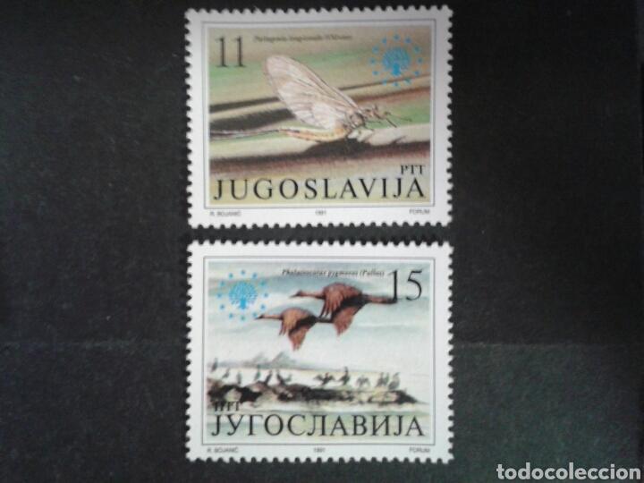 YUGOSLAVIA. YVERT 2367/8. SERIE COMPLETA NUEVA SIN CHARNELA. FAUNA. INSECTOS. AVES. (Sellos - Extranjero - Europa - Yugoslavia)