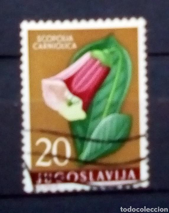 YUGOSLAVIA FLORES SELLO USADO (Sellos - Extranjero - Europa - Yugoslavia)