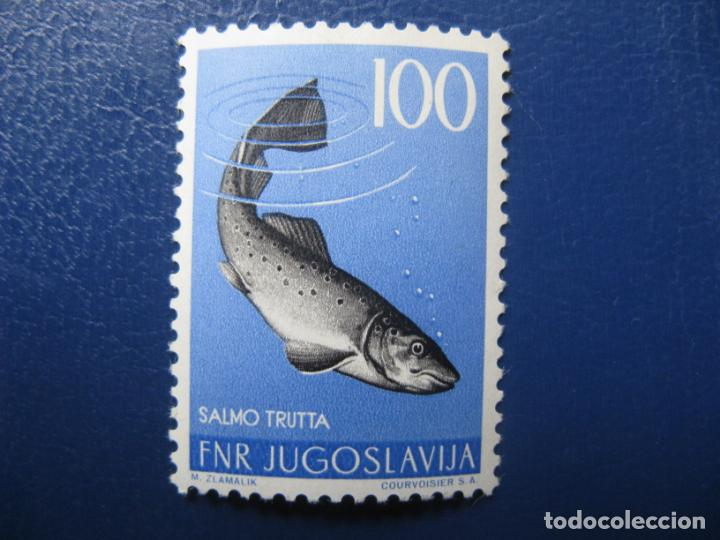 YUGOSLAVIA 1954, TRUCHA SALMO, YVERT 654 (Sellos - Extranjero - Europa - Yugoslavia)