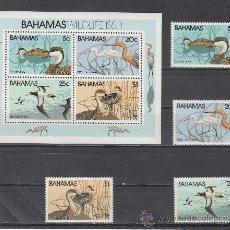 Sellos: BAHAMAS 480/3, HB 34 SIN CHARNELA, VIDA SILVESTRE, FAUNA, PAJAROS, . Lote 26649656