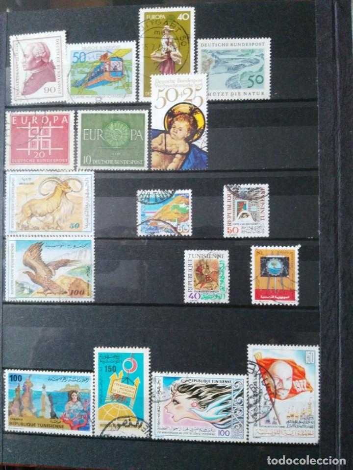 Sellos: Lote clasificador y mas de 200 sellos - Foto 5 - 135716143