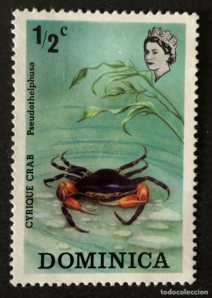 SELLO NUEVO DE DOMINICA 1/2C- CRAB ** (Sellos - Extranjero - América - Otros paises)