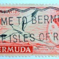 Sellos: SELLO POSTAL BERMUDAS 1955, 1 PENIQUE, TROPICBIRD COLA BLANCA, OVERPRINT EN NEGRO, USADO. Lote 150050138