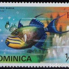 Sellos: DOMINICA 1975 ** NUEVO ** MNH ** PECES: BALISTES BURSA. Lote 151017680