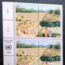 Sellos: ONU (GINEBRA). 139/42 PROGRAMA PARA EL DESARROLLO: RECURSOS FORESTALES, EN PAREJA. 1986. SELLOS NUEV. Lote 211261059