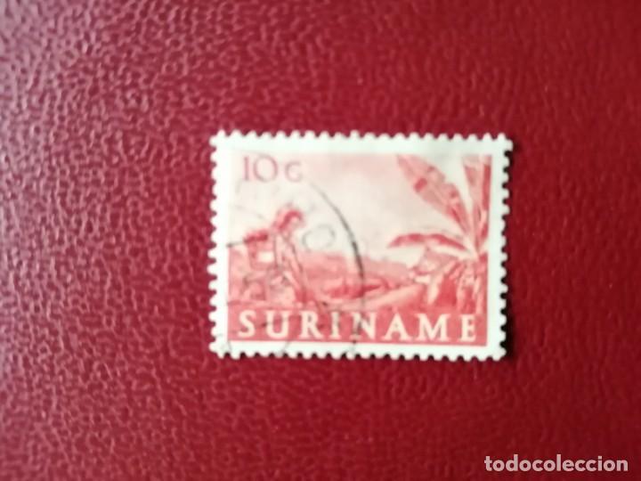 SURINAME - SURINAM - GUAYANA NEERLANDESA - VALOR FACIAL 1O C - PLANTACIÓN AGRÍCOLA (Sellos - Extranjero - América - Otros paises)