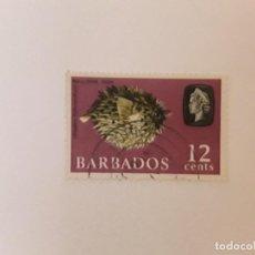 Timbres: BARBADOS SELLO USADO. Lote 294145438