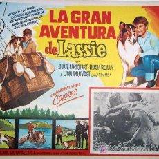Cine: LASSIE - LA GRAN AVENTURA DE LASSIE - GLOBO - MEXICAN ORIGINAL LOBBY CARD. Lote 13369767