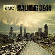 Cine: THE WALKING DEAD - 1ª TEMPORADA (POSTER). Lote 254234795