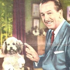 Cine: ANTIGUO POSTER WALT DISNEY REVISTA CANAL TV. Lote 255293760