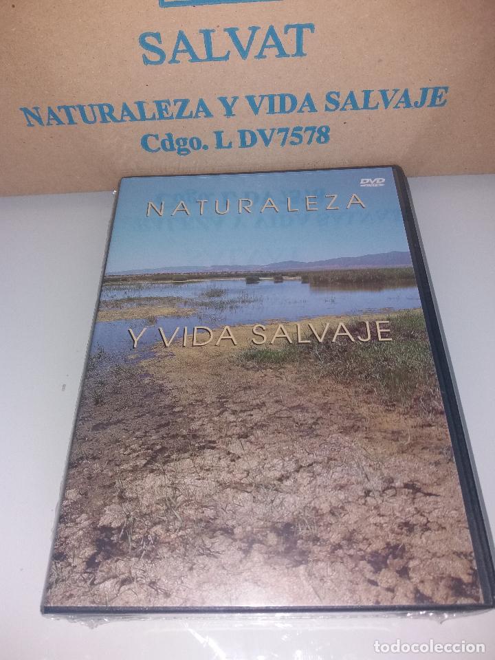 Series de TV: dvd naturaleza y vida salvaje - Foto 2 - 83731456