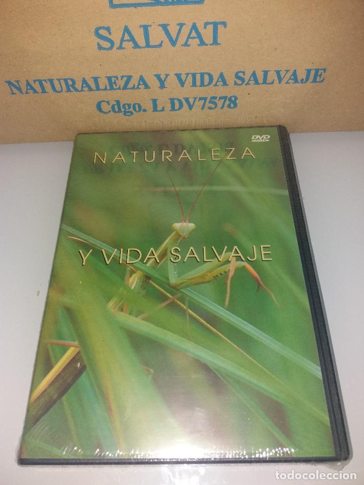 Series de TV: dvd naturaleza y vida salvaje - Foto 3 - 83731456